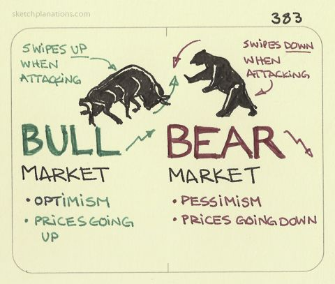 bull market vs bear market infographic shows bulls strike upward and bears strike downward